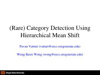 (Rare) Category Detection Using Hierarchical Mean Shift