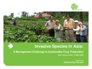 Invasive Species In Asia: