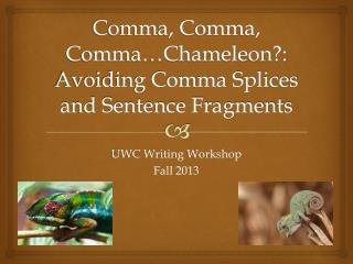 Comma, Comma, Comma…Chameleon?: Avoiding Comma Splices and Sentence Fragments
