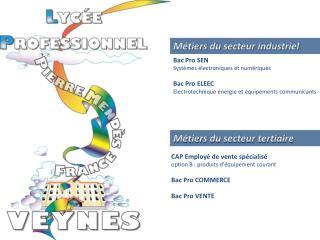 CAP Employ� de vente sp�cialis� option B : produits d'�quipement courant Bac Pro COMMERCE