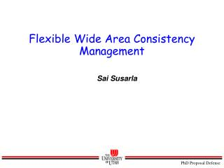 Flexible Wide Area Consistency Management