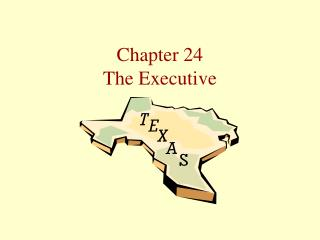 Chapter 24 The Executive