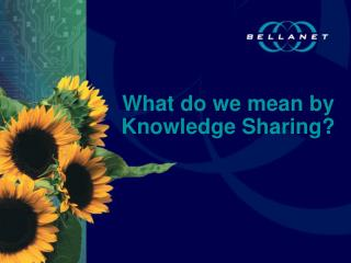 What do we mean by Knowledge Sharing?