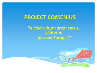 PROIECT COMENIUS