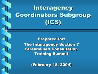 Interagency Coordinators Subgroup (ICS)