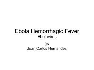 Ebola Hemorrhagic Fever Ebolavirus