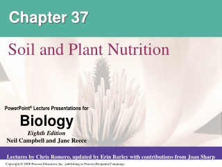 Plant Nutrition