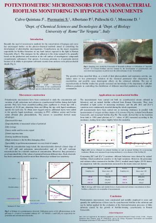 POTENTIOMETRIC MICROSENSORS FOR CYANOBACTERIAL BIOFILMS MONITORING IN HYPOGEAN MONUMENTS