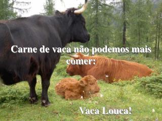 Carne de vaca n�o podemos mais comer: