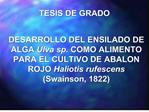TESIS DE GRADO