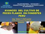 AVANCES  DEL CULTIVO DE PECES PLANOS  EN FONDEPES  PERU