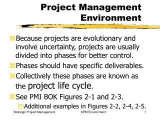 Project Management Environment