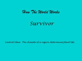 How The World Works Survivor