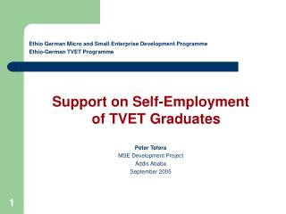 Ethio German Micro and Small Enterprise Development Programme Ethio-German TVET Programme