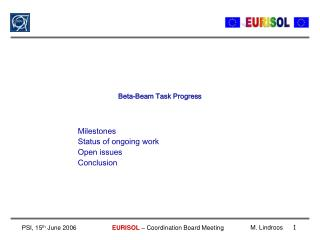 Beta-Beam Task Progress