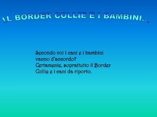 IL BORDER COLLIE E I BAMBINI...