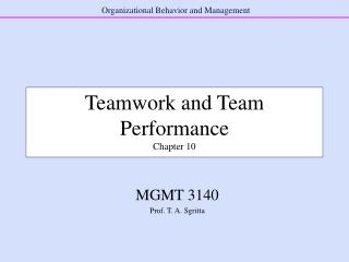 Teamwork and Team Performance Chapter 10