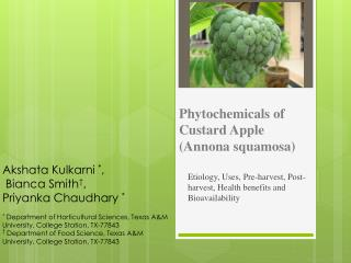 Phytochemicals of Custard Apple (Annona squamosa)