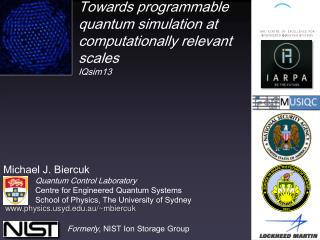 Towards programmable quantum simulation at computationally relevant scales IQsim13