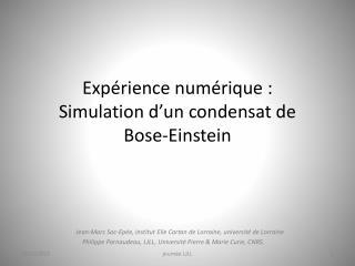 Expérience numérique : Simulation d'un condensat de  Bose-Einstein