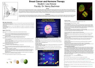 Breast Cancer and Hormone Therapy Student: Lisa Kiesow Faculty: Dr. Nancy Bachman