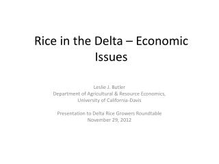 Rice in the Delta – Economic Issues