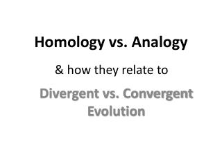 Homology vs. Analogy