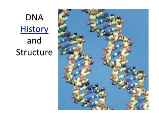 DNA  History  and Structure