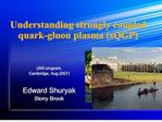 Understanding strongly coupled quark-gluon plasma sQGP