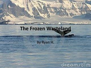 The Frozen Wasteland