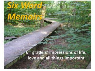 Six Word  Memoirs