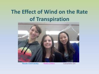 The Effect of Wind on the Rate of Transpiration