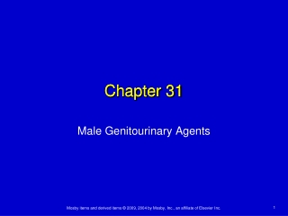 Geriatrics Update 2004