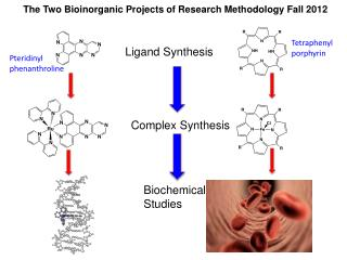 The Two Bioinorganic Projects of Research Methodology Fall 2012