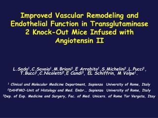 Transglutaminases (TGs) in the Vascular system