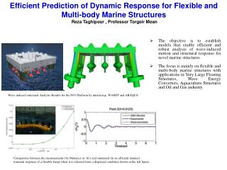 Efficient Prediction of Dynamic Response for Flexible and  Multi-body Marine Structures  Reza Taghipour , Professor Torg