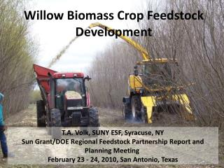 Willow Biomass Crop Feedstock Development