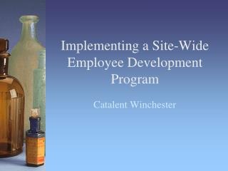 Implementing a Site-Wide Employee Development Program