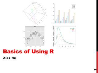 Basics of Using R