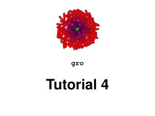 gro Tutorial  4