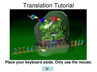 Translation Tutorial