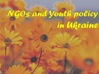 NGO s  and Youth policy in  Ukraine
