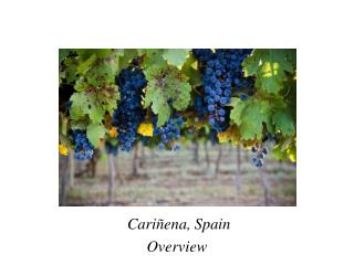 Cariñena ,  Spain Overview