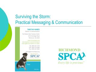 Surviving the Storm:  Practical Messaging & Communication