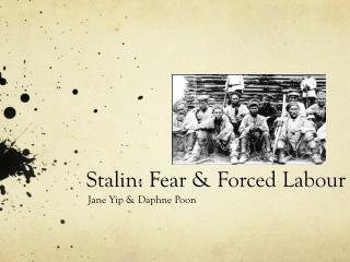 Stalin: Fear & Forced Labour