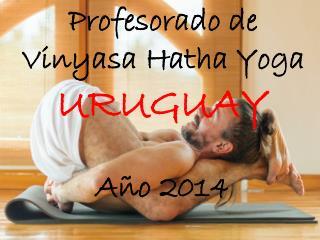 Profesorado de  Vinyasa Hatha  Yoga  URUGUAY Año  2014