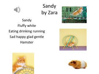 Sandy by  Z ara