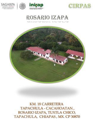 ROSARIO IZAPA