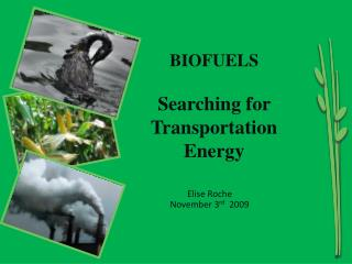 BIOFUELS Searching for  Transportation  Energy