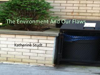 The Environment And Our Flaws